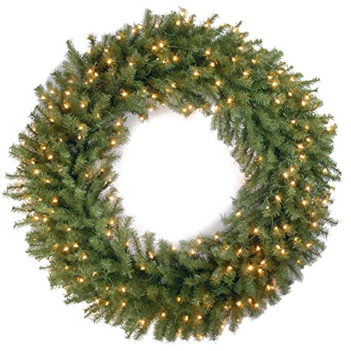 National Tree Company Pre-lit Artificial Christmas Wreath| Includes Pre-strung White Lights | Norwood Fir - 48 inch