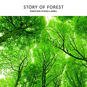 Story of Forest
