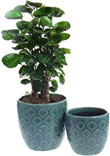 Nocuswao Ceramic Planters Garden Flower Pot 5.5 and 4.5 Inch Set of 2, Indoor and Outdoor, Modern Plant Containers(Green,S...