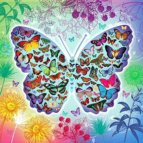 DIIOPN strasssteentjes, 5D-schilderij om zelf te maken met 3D-vlinders, borduurwerk, kruissteek, mozaïek, schilderen, diamant, rond, 40 x 50 cm