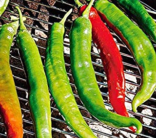 Italian Roaster II F1 Hybrid Hot Pepper Seeds (20 Seed Pack)