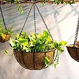Ganeep Colgante de hortalizas de coco maceta jardinera jardineras jardinera decoración de hierro planta de hierro maceta (tamaño : 40CM)