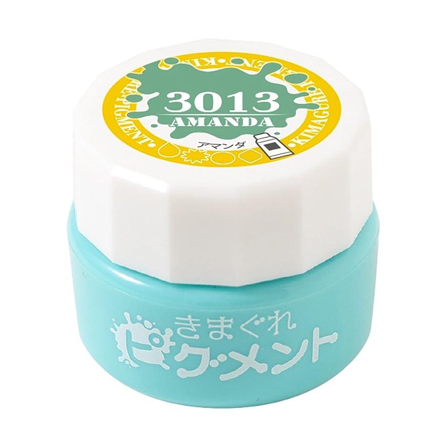 翻訳朝食を食べる輪郭Bettygel きまぐれピグメント アマンダ QYJ-3013 4g UV/LED対応