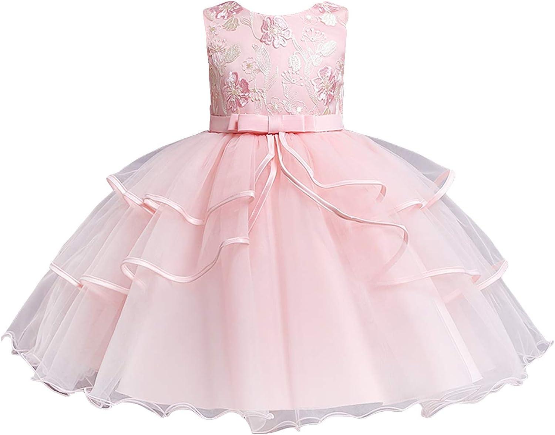GRASWE Girl Vintage Princess Dress Embroidered Flower Dress Knee Length Toddler Puffy Dress