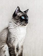 Notebook: Cat Ragdoll fluffy kitten cats kittens ragdolls breed