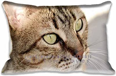 Mi Gato HD Pillow Covers Decorative Pillow Case Protector 16x24inch(Twin Sides)