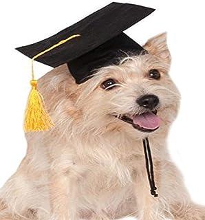Rubie's Black Graduation Hat Pet Accessory, Medium/Large