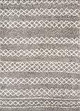 Momeni Rugs Maya Collection Ultra Thick Pile Shag Area Rug, 9'3' x 12'6', Grey