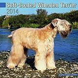 Wheaten Terriers, Soft Coated 2014 Wall Calendar