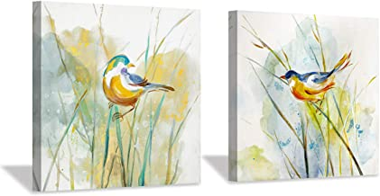 """Hardy Gallery Abstract Birds Picture Wall Art: Colorful Animal Birds & Grass Painting Canvas Print Artwork for Wall (12"""" x..."""
