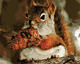 Painting by Numbers DIY Oil Painting for Adult Animal Squirrel Canvas Print Wall Art Decoration 40X50Cm