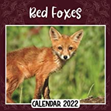 Red Foxes 2022 Calendar: Red Foxes mini calendar 2022 2023, Red Foxes 2022 Planner with Monthly Tabs and Notes Section, Re...