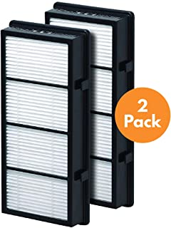 True HEPA Replacement Filter Compatible with Holmes AER1 HAPF300/HAPF30 (D Filter) and Bionaire BAP536/BAP516, 2 Pack