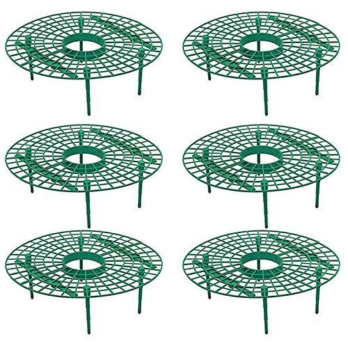 Camisin 6 StüCke Plant Plastic Werkzeug Erdbeer Wachsen Kreis Support Rack Landwirtschaft Rahmen Gartenarbeit Ranke