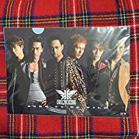 L015 EXILE THE SECOND カレンダー クリアファイル