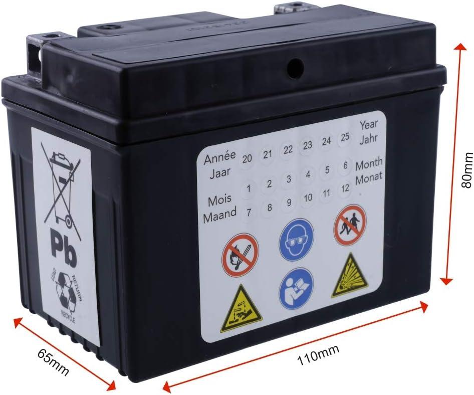 2extreme 12 Volt 5ah Batterie Wartungsfrei Inklusive 7 50 Batteriepfand Kompatibel Für Explorer Spin Ge 50 Auto