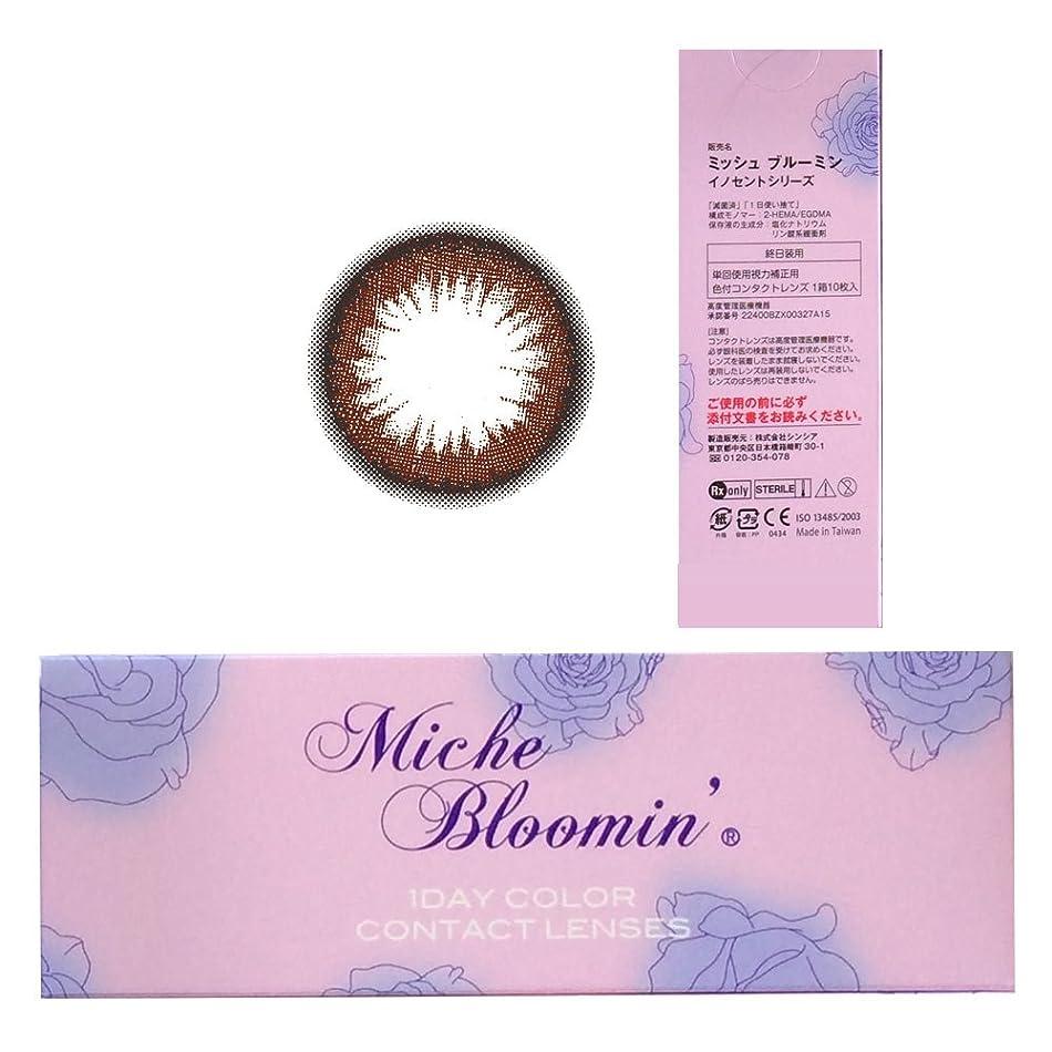 調停者全員流出ミッシュブルーミン Miche Bloomin 1day 04 セピアリッチ 10枚入 2箱セット (PWR) -9.00