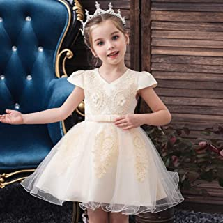 Luxury Infants and Young Children Short-Sleeved Princess Dress Embroidered Beaded Wedding Dress Princess Lei Mesh Gauze Tutu Dress Girls Dress ryq (Color : Champagne, Size : 110cm)