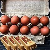 【普段使いにおススメ】櫛田養鶏場のおいしい赤卵【40個入り(36個+4個破卵保障)】餌にこだわった超新鮮たまごを養鶏場から直送!