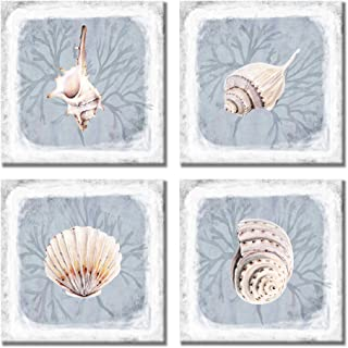 Paimuni Seashell Wall Decor 4 Pieces Modern Ocean Beach Picture Small Conch Shell Painting Print on Canvas for Bathroom Kitchen Decoration Coastal Wall Art Ready to Hang 12x12 inches
