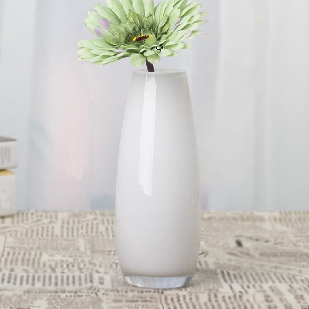 吐き出す意義楽観IVEGLA ガラス花瓶 フラワーベース装飾品 セラミック花瓶 フラワーアレンジメント陶器 花器 装飾家の装飾