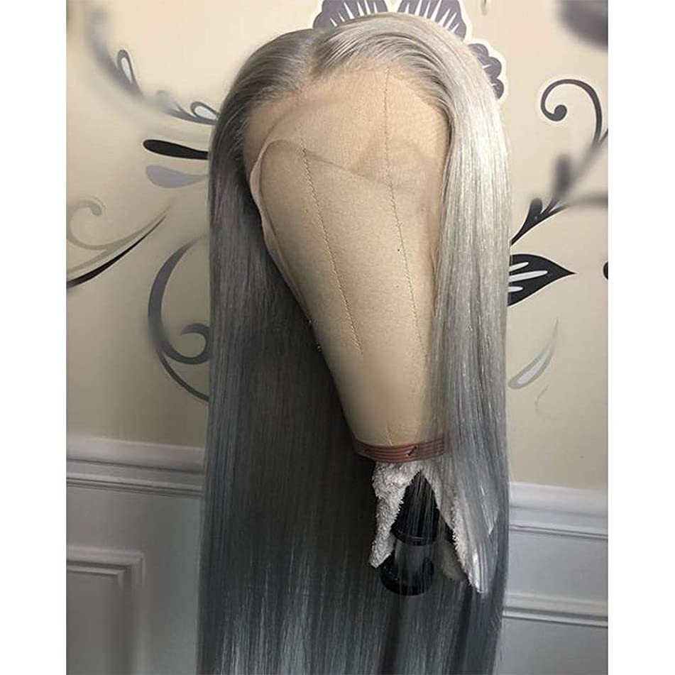 QD-Tizer Lace Front Wigs, Long Straight Hair Gray Color Glueless Heat Resistant Fiber Hair Synthetic Lace Front Wigs for Fashion Women