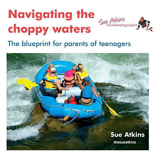 Navigating the Choppy Waters audiobook cover art