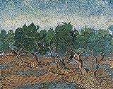 PLKIJ Personalizable Rompecabezas Serie Van Gogh-Surco de olivos-1000 Piezas Rompecabezas Cuadros Famosos Arte para Adultos Niños Juegos Educativos Juguetes Regalo 75x50cm