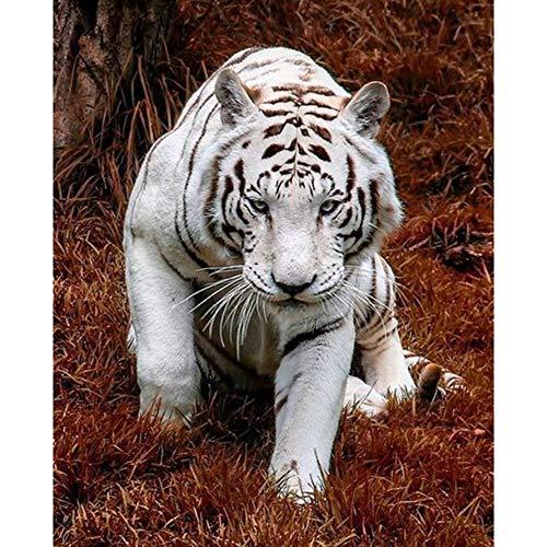 Lazodaer - Kit per punto croce in resina 5D per pittura a mosaico fai da te con cristalli ricamati, decorazione per la casa, motivo: tigre bianca, pronta per essere alzata, 30 x 39,9 cm