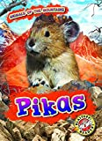 Pikas (Animals of the Mountains: Blastoff! Readers, Level 2)