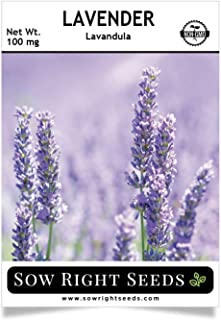 Sow Right Seeds - Lavender Seed - Non-GMO Heirloom Seeds with Full Instructions for Planting a Beautiful Herb Garden; Great Gift for Your Gardening Friend.
