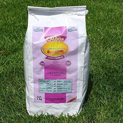 Caldor Maintenance Strauß Kartoffel | 12 kg Sack | getreidefreies Hunde Trockenfutter | Hundefutter ohne Getreide