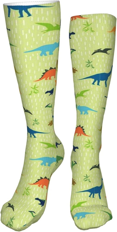 Dinosaurs Pattern Women Premium High Socks, Stocking High Leg Warmer Sockings Crew Sock For Daily And Work