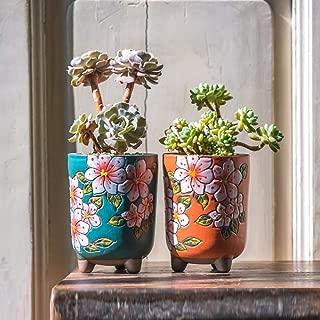 Best pretty plant pots Reviews
