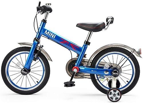 FAHBN Vélo Enfant 16 Pouces Bébé Vélo Enfant Vélo Garçon Fille Jeune Enfant Voiture