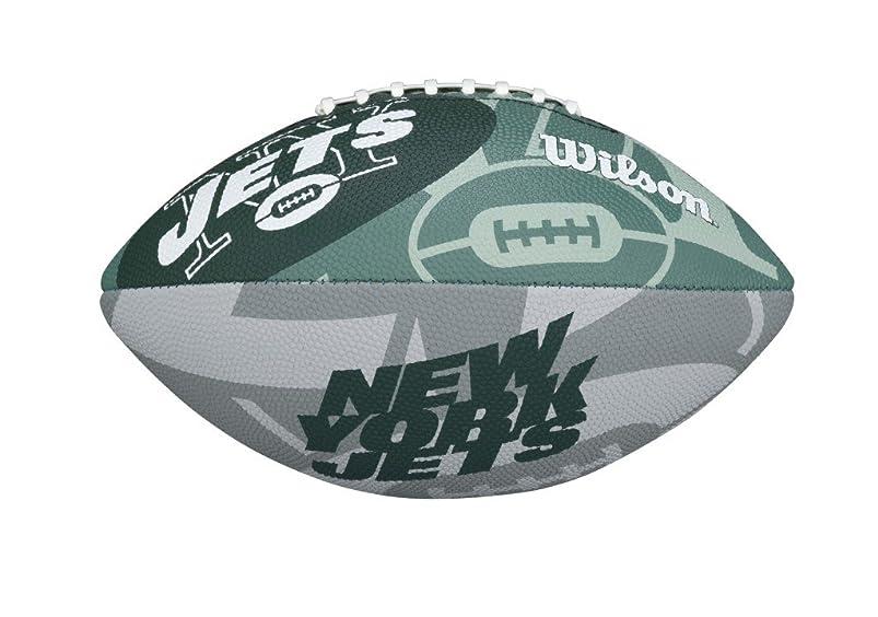 Wilson NFL Junior Team Logo Football wavlvsih398469