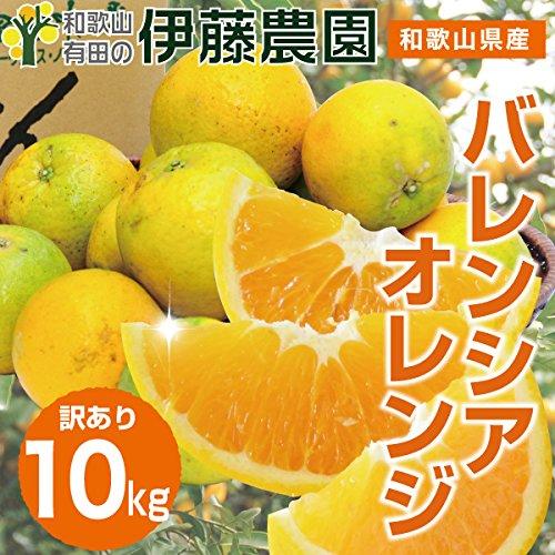 バレンシア オレンジ 箱詰め 送料無料 みかん 蜜柑 (訳あり10kg)