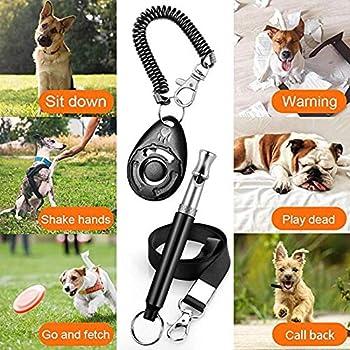 Sifflet professionnel à ultrasons pour chien avec lanière et clicker de dressage pour chien pour arrêter les aboiements fréquences réglables Résultats prouvés