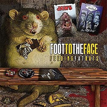 Feeding Fat Rats