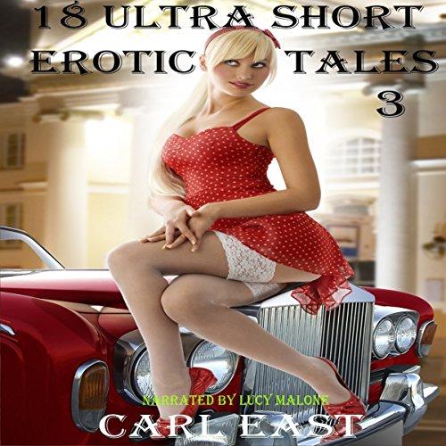 18 Ultra Short Erotic Tales 3 Titelbild