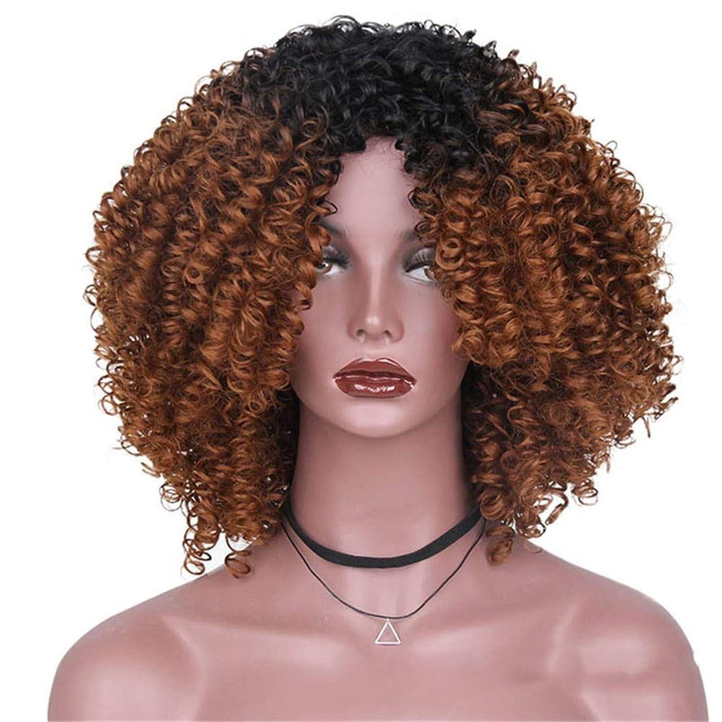 冷笑するセメント無力BOBIDYEE 14インチのアフリカの黒人女性のグラデーションカラー爆発ヘッドふわふわの小さな波の髪のかつらパーティーかつら (色 : C-1)