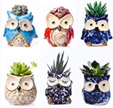 Ceramic Owl Succulent Pot Cute Animal Plant Planters Flowing Glaze Home and Office Decoration Desktop Windowsill Gift for Gardener Birthday (6pcs)