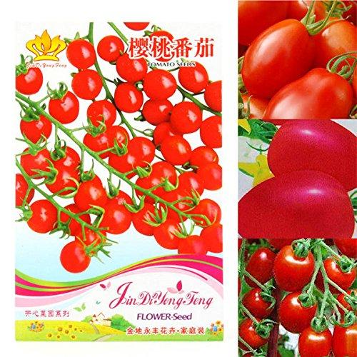 30 PCS rares Graines de tomate cerise sain Délicieux Fruits Légumes Semences Pour Garden New