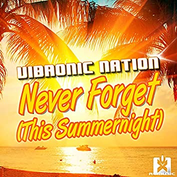 Never Forget (This Summernight)