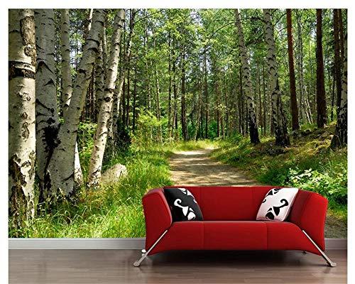 Fototapete Waldweg 3D Fototapete Für Vlies Tapete - Moderne Wanddeko - Design Tapete - Wandtapete - Wand Dekoration 200cm(W) x140cm(H)-4 Stripes