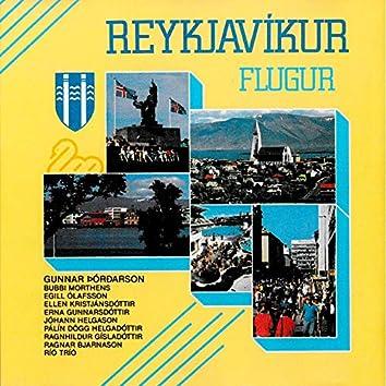 Reykjavíkurflugur