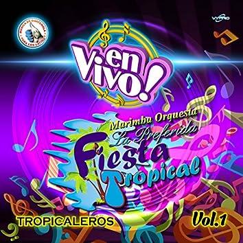 Tropicaleros Vol. 1. Música de Guatemala para los Latinos (En Vivo)