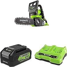 Greenworks 24V Cordless Chainsaw Battery Powered, 25cm Bar Length -2000007 & Battery G24B4 2nd Generation & 24V 2A Dual Sl...