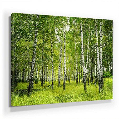 Birkenwald - Leinwandbild 90x60cm, Leinwand auf Echtholzrahmen aufgespannt, UV-stabil und wasserfest, Kunstdruck für Büro oder Wohnzimmer, XXL Deko Bild abstrakt FineArtPrint Wandbild
