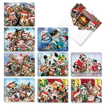 The Best Card Company - 20 Animal Christmas Cards Bulk  10 Designs 2 Each  - Boxed Holiday Cards for Xmas Kids  4 x 5.12 Inch  - Merry Christmas to Zoo AM6652XSG-B2x10